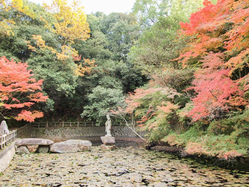 明王院:弁天池の紅葉