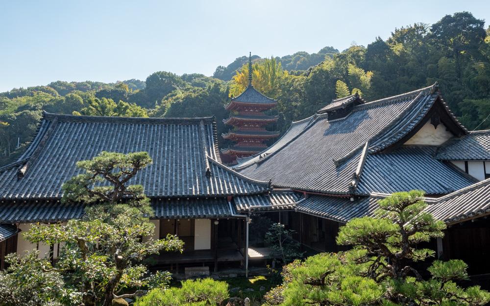 明王院:護摩堂からの眺め