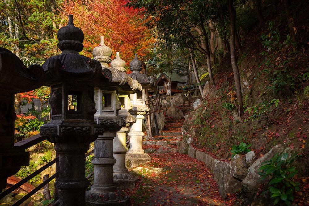 ゑびす宮の石段上の紅葉